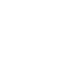 Green Dragon footer logo white